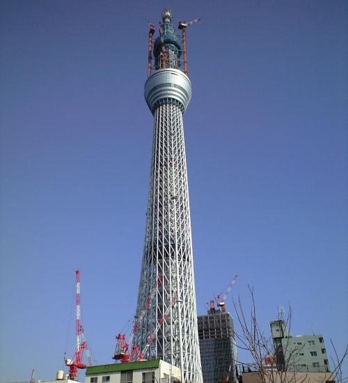 2011年1月5日の東京スイカイツリー
