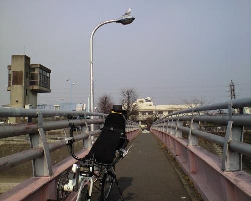 三郷放水路とカモメ