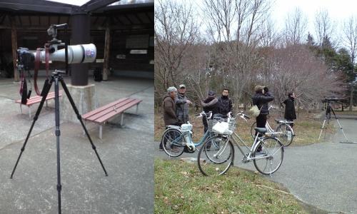 探鳥と野鳥撮影を語る