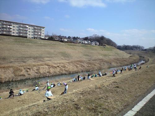 利根運河の芝すべり
